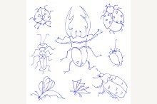 Insects sketch