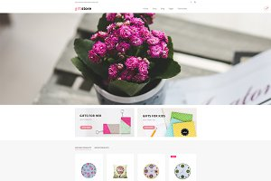 DW GiftStore - WP eCommerce Theme