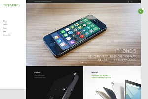 DW TechStore - WP eCommerce Theme
