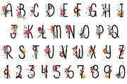 Floral Letters & Numbers Vector, PNG