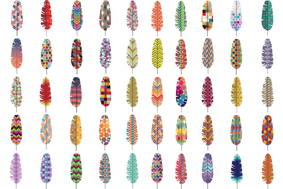 50 Feathers w/ Patterns Vector & PNG in Illustrations - product preview 8
