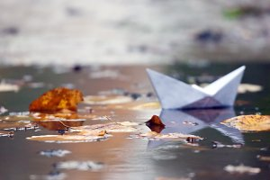 paper boat in a pool with leaves