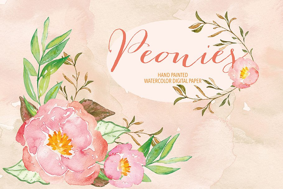 Watercolor peonies in Illustrations - product preview 8