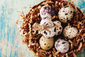 Easter Quail Eggs in stylized nest