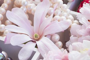 Magnolia flower and pearls