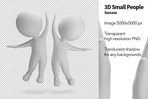 3D Small People - Success