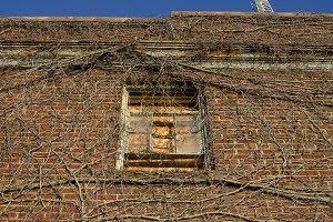 Overtaken Window