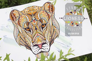 Ethnic Collection: Lioness