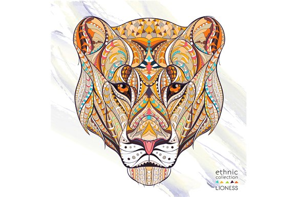 ethnic collection lioness illustrations creative market