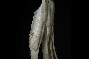 Ex swan