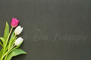 tulips on black glitter desk photo