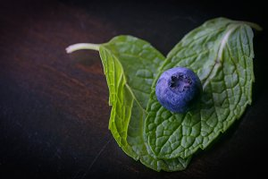 Single Blueberry on mint leaves