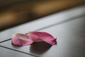 Two Rose Petals