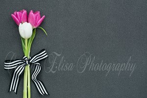 Styled stock photography tulips desk