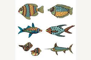 Hand Drawn Fish