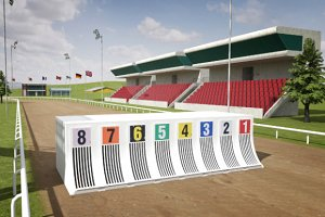 Greyhound Racecourse Pack
