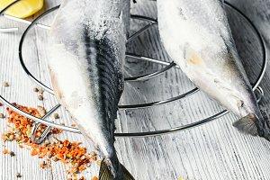 Carcasses frozen mackerel