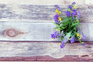 flowers on the old boards.