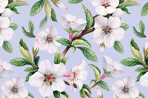 Spring blossom. Watercolor flowers