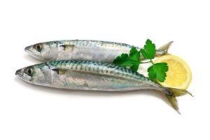 two mackerel with lemon
