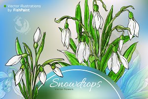 Vector watercolor snowdrop flowers