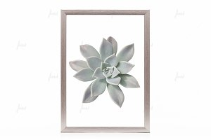 Silver styled frame isolated mockup