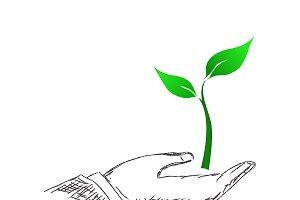 hand holding plant, eco