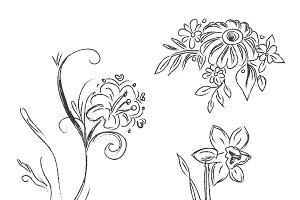 sketch, flowers