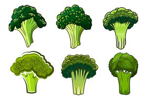 Green farm broccoli vegetables
