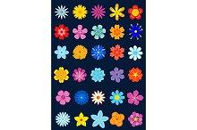 Spring colour flowers set