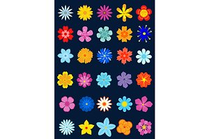 Spring colour flowers set