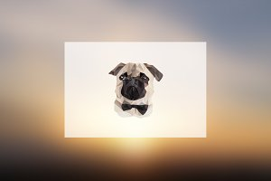 Geometric Pug - Illustration