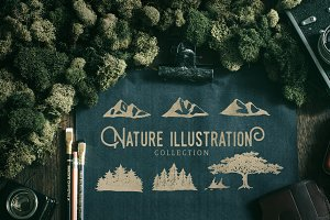 Nature Illustration Bundle (50%OFF!)