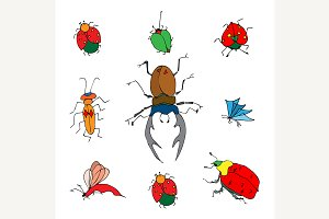 insects doodle set