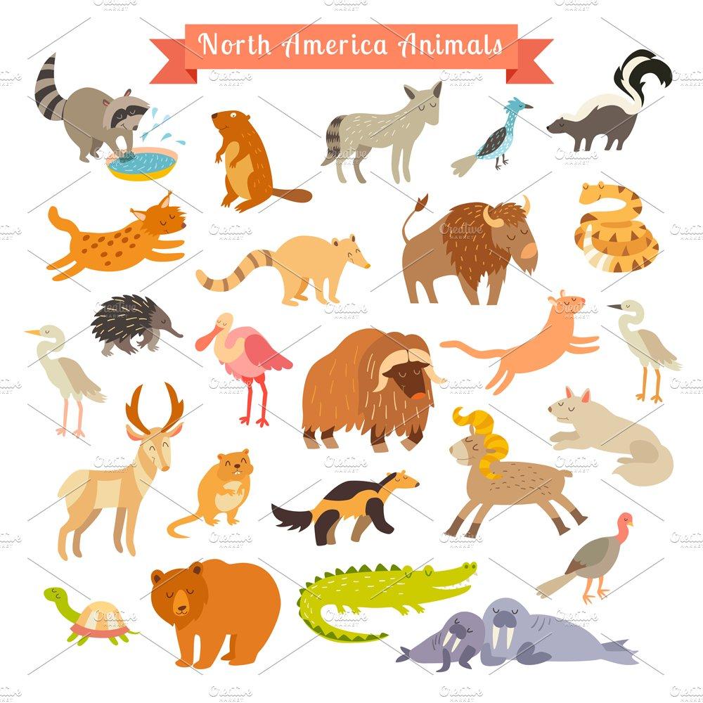 North America animals  Illustrations  Creative Market