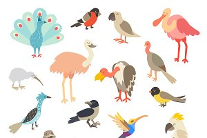 Birds of the world, a big set