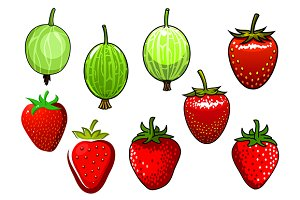 Strawberry and gooseberry fruits