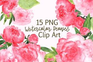 Watercolor Peonies Clip Art