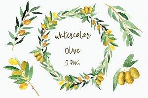Watercolor Olive Clip Art