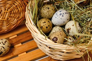 Dietary quail eggs in basket. Easter