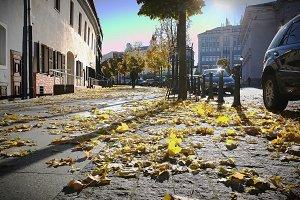 Autumn in Vilnius