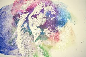 Watercolor painting of lion.