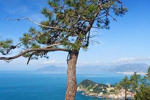 Liguria - Tigullio gulf