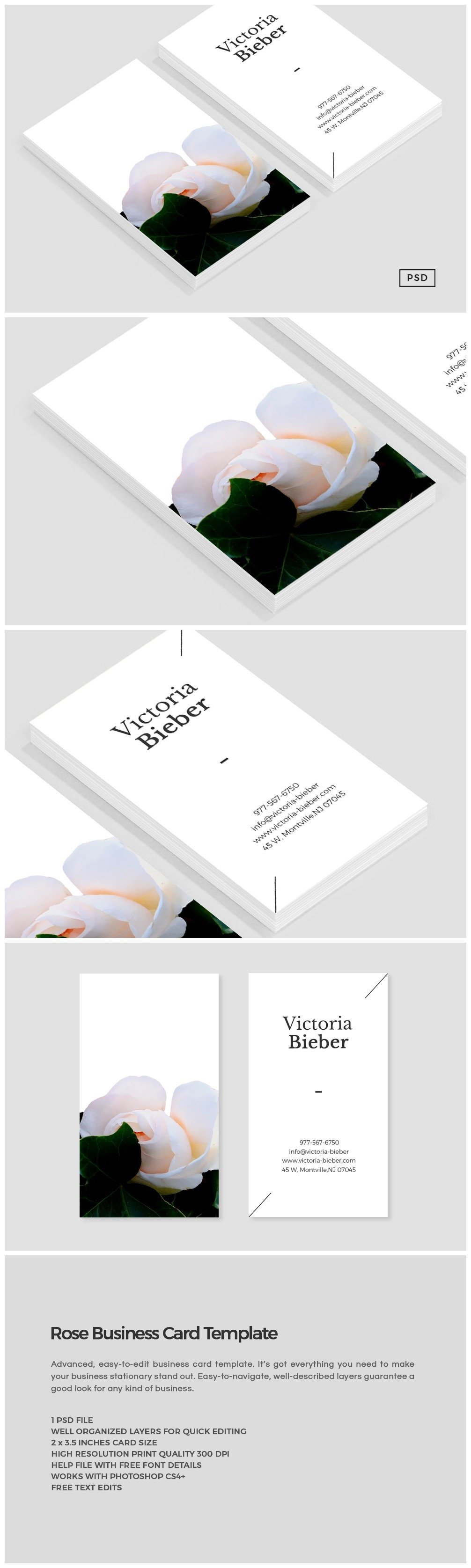 Rose business card template business card templates creative market flashek Gallery