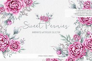 Sweet Peonies