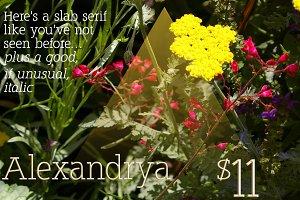 Alexandrya: a modern slab serif