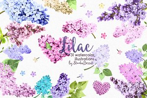 Lilac - Watercolor Flowers Clipart
