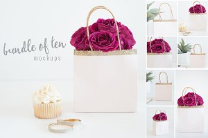 Gift Bag Stock Photos/ Mockups