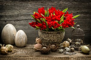 Easter eggs and red tulip flowers
