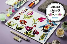30 Watercolor vector objects + BONUS